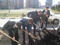 Реализация областной программы «Зеленая столица»