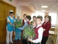 Ученики 4 «Д» класса приняли участие в акции «Ура! Зелёный витамин!»