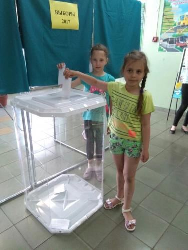 Выборы в Главного Регулировщика «Стране СВЕТОФОРИИ»