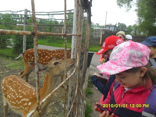 Удивительный мир животных  Старооскольского зоопарка