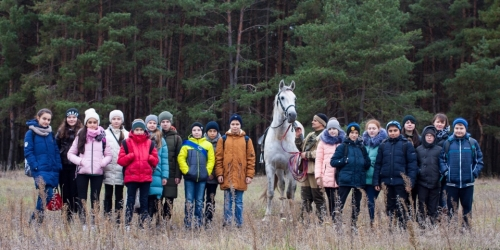 От древних времен до наших дней лошадь – друг человека