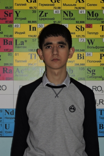 Победитель регионального  этапа всероссийской олимпиады школьников по химии