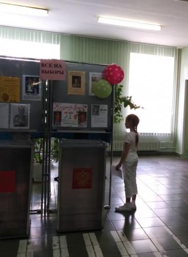Деловая игра «Выборы Главного регулировщика Страны Светофории»