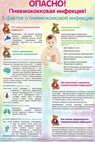5 фактов о пневмококковой инфекции