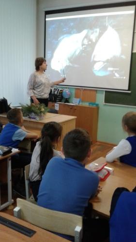 """Экологический урок """"Моря России"""""""