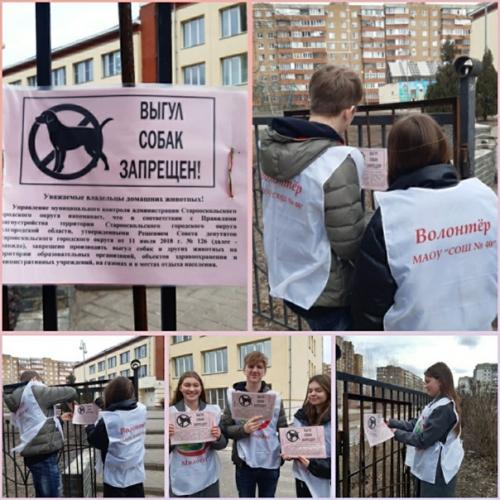 """Акция волонтеров отряда """"Милосердие"""""""